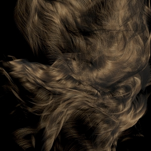 hair from abcimport